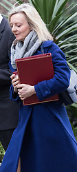Downing Street, London, March 8th 2016. Environment Food and Rural Affairs Secretary Elizabeth Truss arrives for the weekly UK cabinet meeting at Downing Street. &copy;Paul Davey<br /> FOR LICENCING CONTACT: Paul Davey +44 (0) 7966 016 296 paul@pauldaveycreative.co.uk