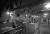 1971 - ESB Piggery, North Co Dublin.