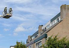 Kat in Nood, Kortenhoef, Wijdemeren, Noord Holland, Netherlands