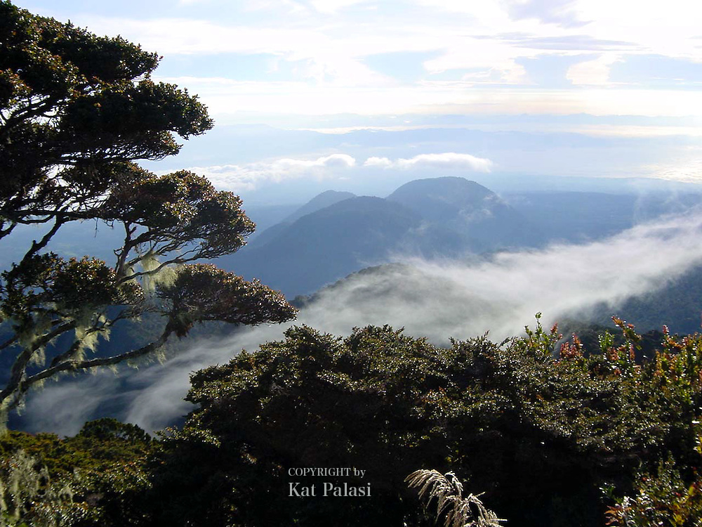 View from Mt. Dulang-dulang in Bukidnon, Mindanao,Philippines