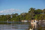 Tourists, in boats, watching jaguar, eco-tourists, Pantanal, Brazil, South America