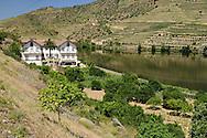 Symington Family Estates - Quinta do Vesœvio