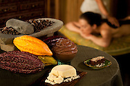 Fivelements, spa, treatment, model, chocolate, cacao, cocoa butter, healing, mask