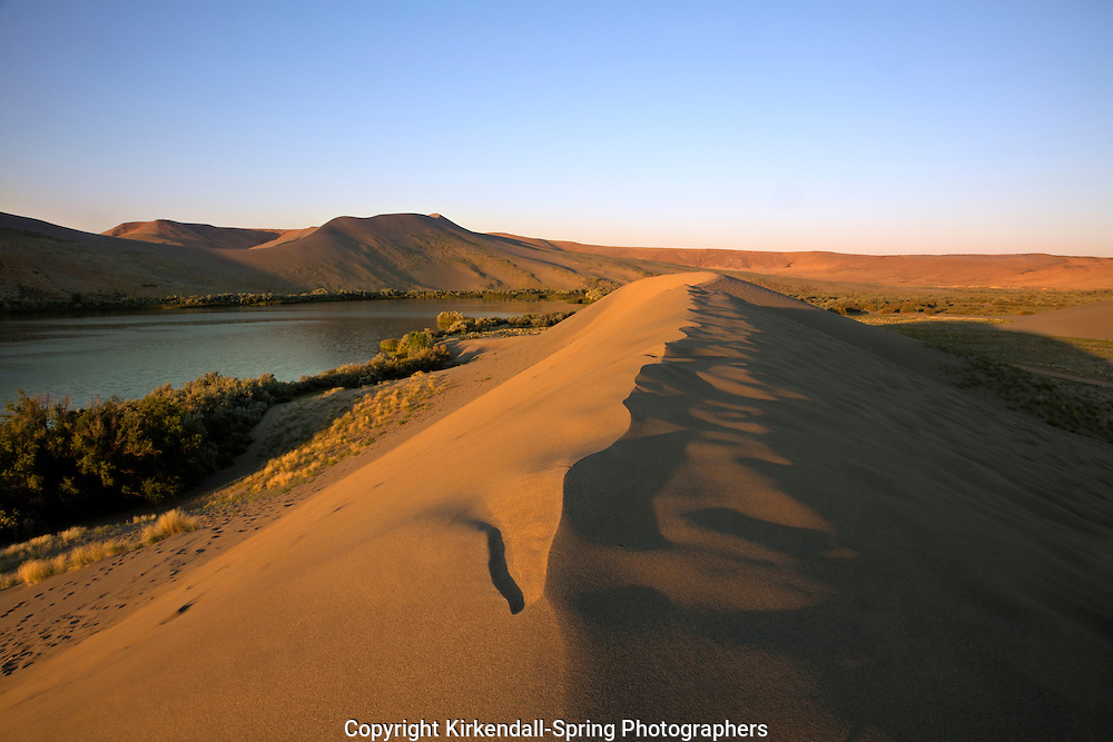 ID00658-00...IDAHO - Early morning light on a sand dune located along the shores of Dune Lake in Bruneau Dunes State Park.