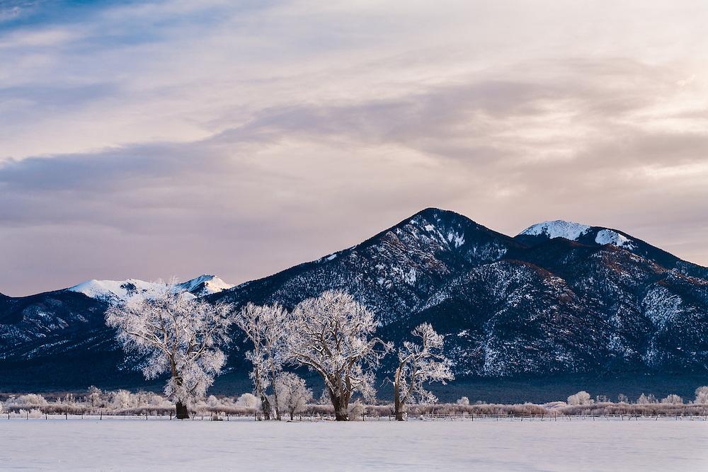 A winter scene, Taos, New Mexico.