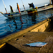 A small fish lies on a wooden fishing boat while fishermen pull in their catch a few hundred meters away from shore near Cape Coast, roughly 120km west of Ghana's capital Accra on Thursday April 9, 2009.