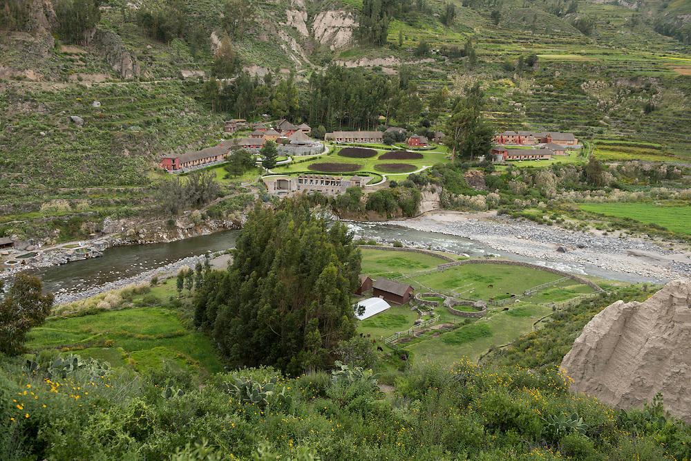 South America,Peru, Yunque, Colca Canyon, Colca Lodge,