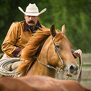 Cowboy Ricky Falcon of the King Ranch