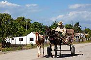 Horse and cart in Pinar del Rio, Cuba.