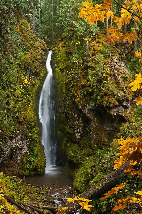 Pinard Falls; Umpqua National Forest, Cascade Mountains, Oregon