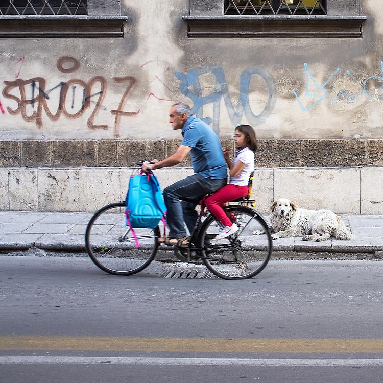 Italy - Italien - Mobile Digital Diary ITALIA / Sizilien (photo taken with Canon) HIER: Palermo, Strassenszene - Mann auf Fahrrad fährt Kind zur Schule, der HUND auf der Strasse; 28.05.2012; © Christian Jungeblodt