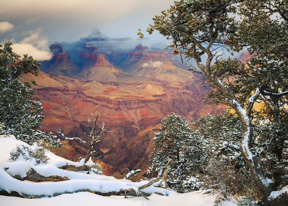 A scene of the Grand Canyon. From the South Rim near Grandeur Point.