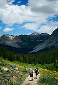 Mountain Sports and Living Summer Request