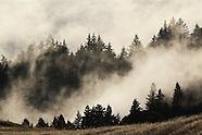 Mount Tamalpais Photos