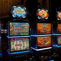 Hospitality - Gaming - Casino