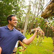 Kevin Valent of Jacksonville, holding his daughter Sawyer, 2, feeds a giraffe named Tebow a leafy treat during a tour of White Oak. White Oak Conservation is a 600-acre wildlife research and training facility in Yulee, Florida. Their mission is to conserve species through innovative breeding, conservation and education programs.