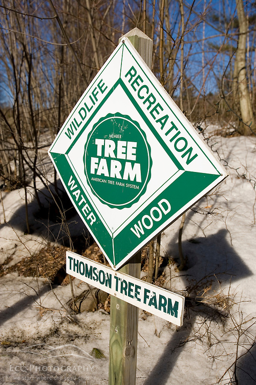 Thomson Family tree farm in Orford, New Hampshire.