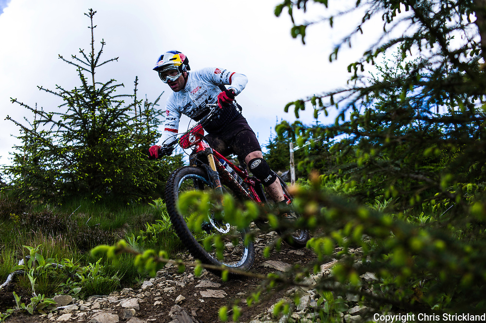 Glentress, Peebles, Scotland, UK. 31st May 2015. WILDHABER<br /> Rene Wildhaber in action on Stage 8 at The Enduro World Series Round 3 taking place on the iconic 7Stanes trails during Tweedlove Festival. Mountain bikers came up against eight stages across two days, with an intense 2,695 metres of climbing over 93km. As well as the physicality of the liaisons, the stages themselves are technical, catching many off guard.