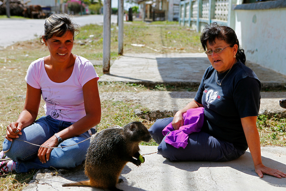 Central America, Cuba, Caibarien. Two women sit with a Cuban Hutia as a pet.
