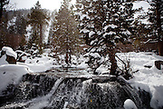A stream flows into Emerald Bay in Lake Tahoe, Calif., February 28, 2012..