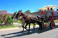 Horses in Batabano, Mayabeque Province, Cuba.