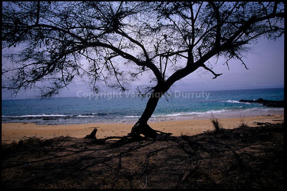 By the seaside, Principe // bord de mer, Principe