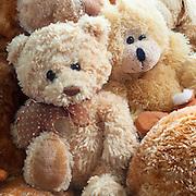 WA11688-00...WASHINGTON - Stuffed animals.