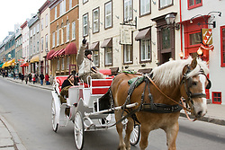 Charrete turistica nas ruas de Quebec, Canada/ Touristic carriage on the streets of Quebec, Canada