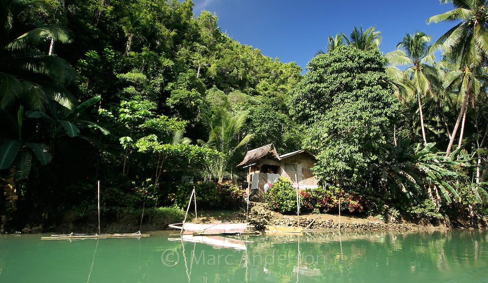 A small traditional house on the Loboc River, surrounded by palm trees and lush rainforest, Bohol, Philippines..