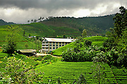 Tea Factory, Highlands of Sri Lanka.
