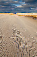 Golden late afternoon light on the sands of Chapin Beach, Dennis.