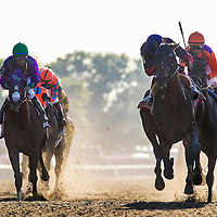 June 07, 2014: Tonalist with Joel Rosario (navy cap) wins the Belmont Stakes ending California Chrome's (left) bid at a Triple Crown at Belmont Park in Elmont New York. Alex Evers/ESW/CSM
