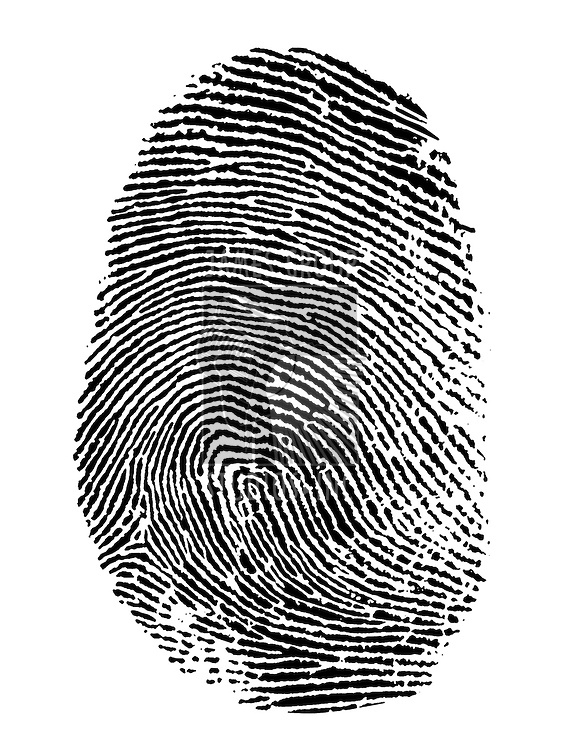 thumb print on white background