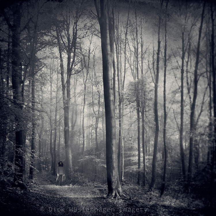 Beech tree forest in morning light with a man standing on the path wearing a mask.<br />