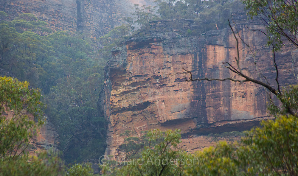 Early morning mist and sandstone cliffs in Wollemi National Park, NSW, Australia