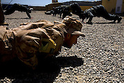 """Soldiers from the Czech Republic train policemen of the Afghan National Police (ANP) into becoming a """"SWAT"""" elite team at FOB Shank in the province of Logar in Afghanistan on Sunday, May 31st 2009...Photo: Guilad Kahn."""