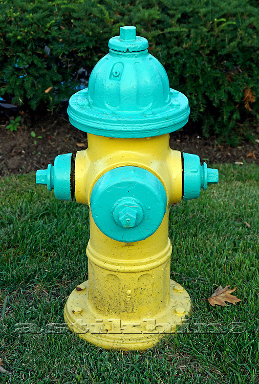Hydrant yellow and green.