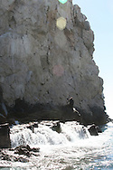Sea Lions at the Land's End, Cabo San Lucas, Mexico<br />