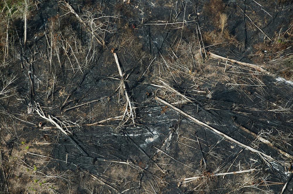 Nov. 15, 2003: Helicopter scouting of illegal logging on Jaurucu River in Para, Brazil. ©Daniel Beltra