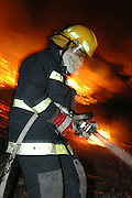 Israel, Haifa Carmel Mountain Forest, fire fighter fighting the flames
