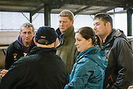Aberdeen Angus Cattle Society classifiaction demonstration at Rulesmains Farm, Duns, Scottish Borders.