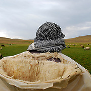 The Beritan have traditionally been a pastoral nomad tribe, leading flocks of sheep and cows from winter quarters several hundred miles away to summer grazing grounds each spring.