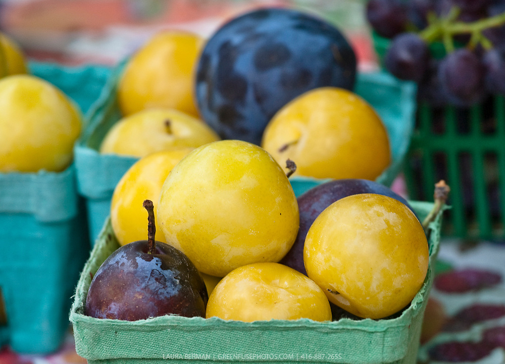 Yellow plums at a farmers' market