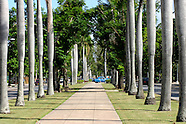 Playa streets and sidewalks.