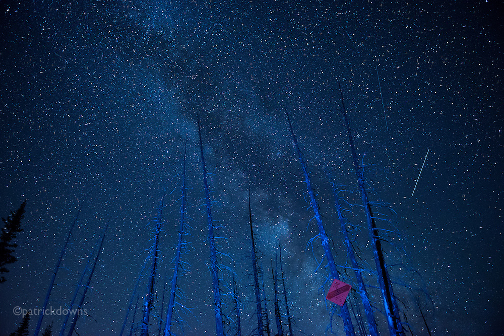 Part of the Milky Way, shooting stars, and ghostly tree skeletons on top of Deer Park, Olympic National Park.