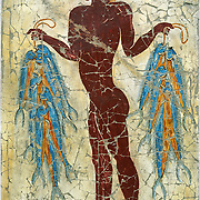 """""""A man with fishes"""" is copied small by modern artist Spanos from a Minoan era fresco (originally 53 inches high) dating from 1500 BC. Volcanic ash preserved ancient frescoes at Akrotiri on Santorini Island, Greece. Artists paint frescoes on wet plaster, which allows dyes to sink in for greater permanence, but requires the artist to paint much more quickly than on dry plaster. This affects the flow of line and style. Geologic and human history of Santorini: Humans first arrived around 3000 BC on this volcano known in ancient times as Thira (or Thera). The island was a volcanic cone with a circular shoreline until 1646 BC, when one of earths most violent explosions blasted ash all over the Mediterranean, sunk the center of the island, launched tidal waves, and may have ruined the Minoan civilization 70 miles away on Crete. Remarkably, volcanic ash dumped onto the volcanos flanks actually preserved the village of Akrotiri and its 3600-year-old frescoes from the Minoan era. These are some of the earliest known examples of world art history, which you can now view in museums. In 286 BC, the volcano split off Thirasia (Little Thira) Island (to the West). The volcano began rebuilding, and in 197 BC the small center islet of Palia Kameni appeared. In 1707 CE, lava started forming Nea Kameni, the larger center island which erupted as recently as 1956 and caused a huge earthquake (7.8 on the Richter scale) which destroyed most of the houses in the towns of Fira and Oia. Fira and Oia have since been rebuilt as multi-level mazes of fascinating whitewashed architecture, attracting tourists from around the world."""