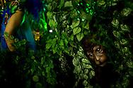 Rio de Janeiro, RJ, Brazil, 07/03/2011, 01h10:  A float shows a monkey in the middle of a forest while a samba dancer dances  in Rio de Janeiro's 2011 Carnival, at Marquês de Sapucaí avenue. (photo: Caio Guatelli)