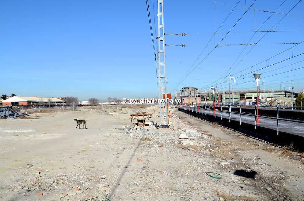 Abandoned greyhound next to a train railway in Getafe, Madrid, Spain.