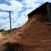Sawdust is piled up at a lumber mill in Marcelândia, in Mato Grosso state, in Brazil on April 6, 2008. The growth of the soybean and cattle business in Mato Grosso state came at the expense of the dense forests that at one time were prevalent in the region. (Photo/Scott Dalton).