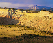 0312-1001B ~ Copyright:  George H. H. Huey ~ View north from Cottonwood Canyon area, with mesas and Table Cliff Plateau [Escalante Mountains] in distance.  [Pinyon-juniper trees in foreground].  Grand Staircase-Escalante National Monument, Utah.